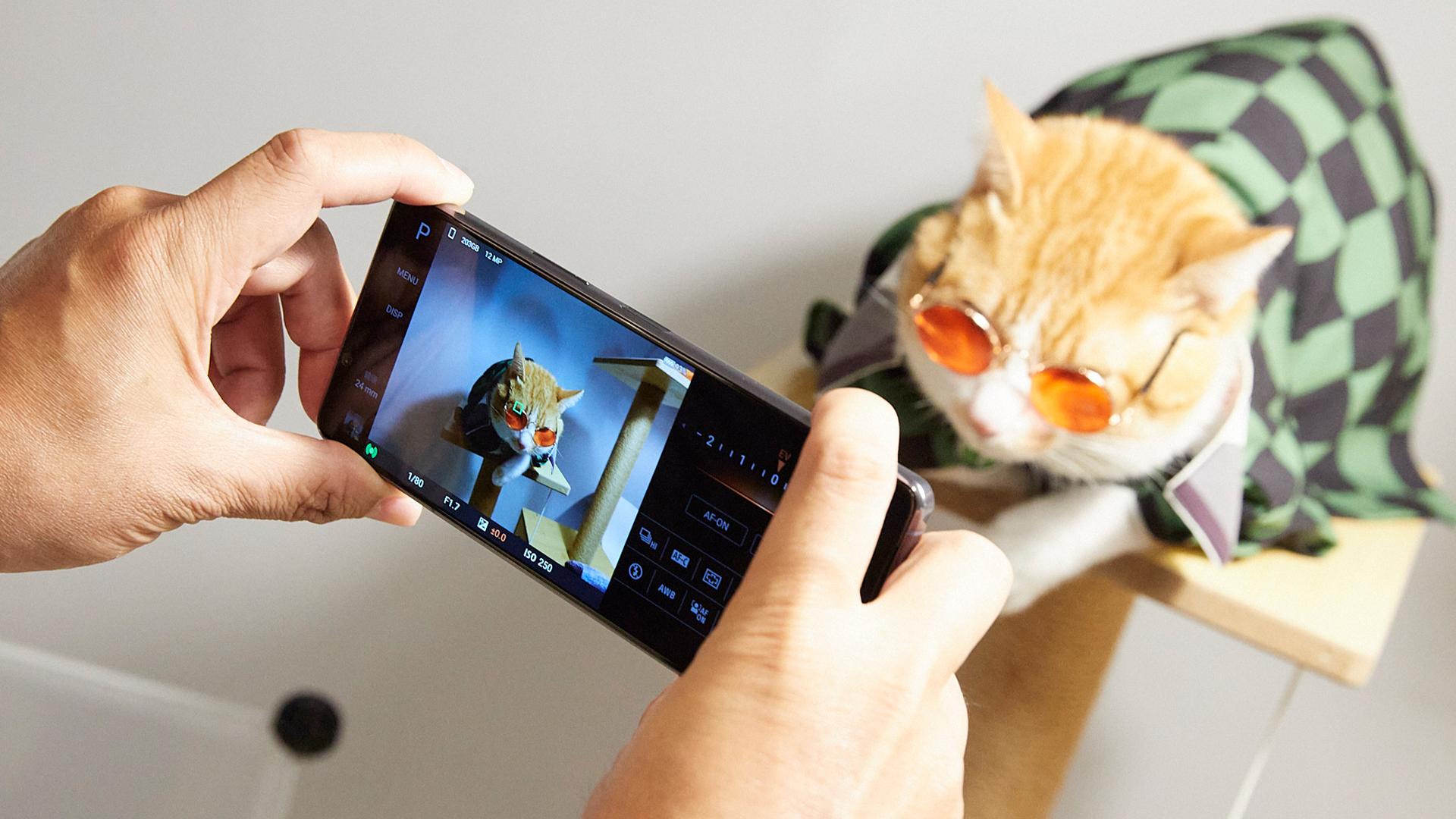 Sony Xperia 1Ⅱ 為寵物而生